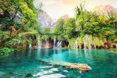 Ett foto av fiskar som simmar i en sjö som tas i den nationalparkPlitvice Kroatien Royaltyfria Foton