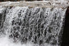 Ett foto av flöda Luda Mara River i Petrich Fotografering för Bildbyråer