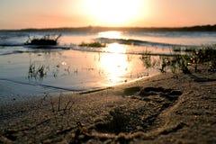 Ett fotsteg i sanden Arkivfoto