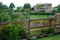 Ett frodigt grönt staket i Tuscany royaltyfria bilder