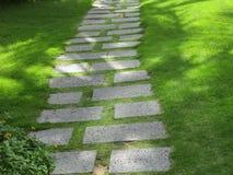 Ett gå spår som göras av stentjock skiva bland gräs Arkivbilder