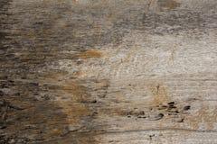Ett gammalt grått vitt gult ruttet träbräde grov naturlig yttersidatextur arkivfoton