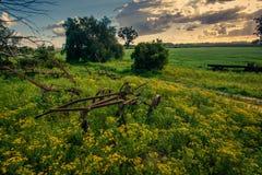 Ett gammalt lantgårdverktyg rostar i fältet på en lantgård i Sydafrika Royaltyfri Foto