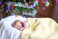 Ett gammalt nyfött för vecka behandla som ett barn flickan som sover nära julgranen Arkivfoton