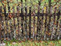 Ett gammalt staket arkivfoton