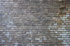 Ett gammalt tegelstenmurverk Royaltyfri Fotografi