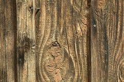 Ett gammalt träbräde är ljus - bryna med ingen målarfärg, textur Royaltyfria Foton