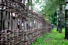 Ett gammalt vide- staket i skog Arkivfoto
