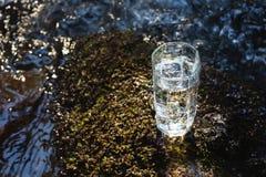 Ett genomskinligt exponeringsglas med att dricka bergvatten i solljus står i mossastenen på solbeame mot en bakgrund Royaltyfria Foton