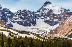 Ett glaciar i den kanadensiska Rocky Mountain Royaltyfria Bilder