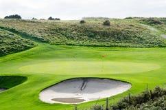 Ett grönt golffält Royaltyfri Foto