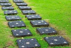 Ett grönt gräs för stenbanacrossinga Fotografering för Bildbyråer