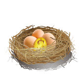 Ett guld- ägg och tre ägg i en bygga bo Arkivfoton