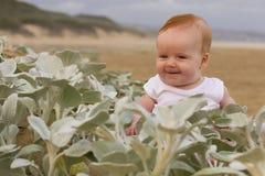 Gulligt behandla som ett barn flickan bak växter på strand Royaltyfri Fotografi