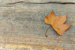 Ett gult blad på en trätabell som retro design Arkivfoto