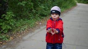 Ett härligt barn promenerar gränden i parkera utomhus- aktiviteter lager videofilmer