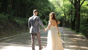 Ett härligt gift par som går ner parkera och innehavet deras händer bröllop för klänningfragmentbeställning Gröna träd på bakgrun stock video