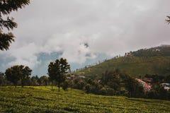 Ett härligt grönt fält nära en liten stad och molniga himlar över kullarna arkivfoto