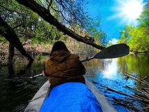 Ett härligt landskap av en kvinnaidrottsman nen simmar i en flod nära Badark royaltyfria foton