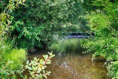Ett härligt landskap med den lilla vattenfallet Fotografering för Bildbyråer
