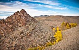 Ett härligt landskap sköt av den Colorado vildmarken Arkivfoton