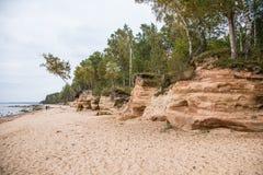 Ett härligt sandstenkustlandskap Träd som växer på klippor ar för en sandsten det baltiska havet Landskap med grottor Royaltyfri Bild