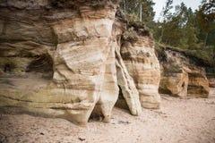 Ett härligt sandstenkustlandskap Träd som växer på klippor ar för en sandsten det baltiska havet Landskap med grottor Fotografering för Bildbyråer