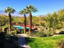 Ett härligt semesterläge med en simbassäng som omges av palmträd och öknen på en härlig solig dag i Palm Desert royaltyfria foton
