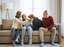 Ett högt par med en tonårs- flicka som hemma sitter på en soffa med hunden royaltyfria bilder