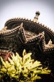 Ett hörn av den imperialistiska trädgården, Peking, Kina Royaltyfri Fotografi