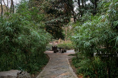 Ett hörn av trädgården Arkivbilder