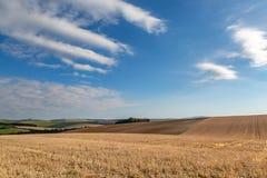 Ett höstligt Sussex lantgårdlandskap royaltyfri bild