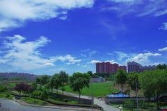 Ett havrefält runt om byggnader och blå himmel med ulliga moln Royaltyfri Fotografi