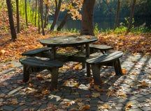 Ett hemtrevligt hörn för att koppla av i hösten parkerar på en ljus solig dag Guld- höst royaltyfri bild