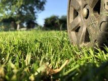 Ett hjul från en gräsklippare på en truncheted lantgårdgräsmatta royaltyfria bilder