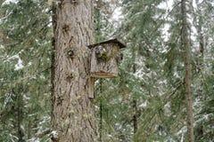 Ett hus för fåglar som göras från trädskäll royaltyfri bild
