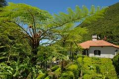 Ett hus och en lös trädgård i ön av madeiran Arkivbild