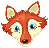 Ett huvud av en räv Arkivfoto