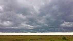 Ett illavarslande stormmoln bildar över evergladesna royaltyfria bilder
