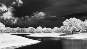Ett infrarött landskap längs en parkerasjö arkivfoto
