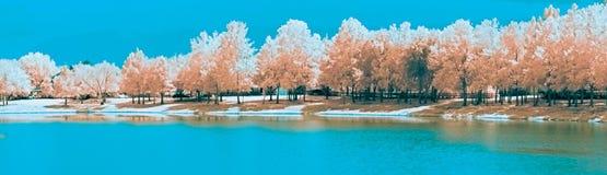 Ett infrarött landskap längs en parkerasjö arkivfoton