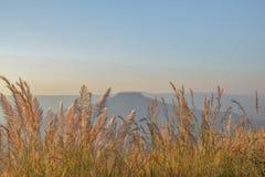 Ett isolerat berg Royaltyfria Bilder
