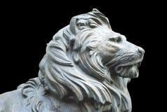 Ett isolerat lejons huvud på svart bakgrund Royaltyfria Foton