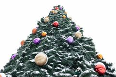 Ett jätte- julträd med färgrika garneringar som täckas med snö mot himlen royaltyfri fotografi