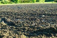 Ett jordbruks- fält med plöjt upp jord Royaltyfria Foton