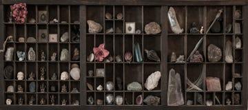 Ett kabinett av kuriositeter Royaltyfria Bilder