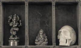 Ett kabinett av kuriositeter arkivfoton