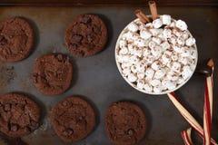 Ett kakaark med chokladkakor, godisrottingar och rånar av varm choklad royaltyfri fotografi