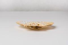 Ett kammusslaskal med den pärlemorfärg halsbandet Royaltyfria Bilder