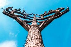 Ett konkret träd med moment royaltyfri foto